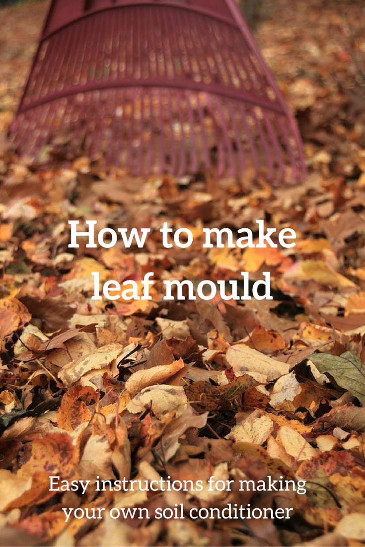 How to make leaf mould easy, free garden fertiliser