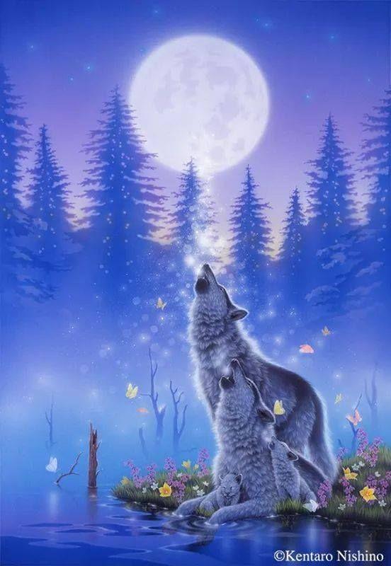 Pin De Diane Baptistat En Natives Wolves The Moon Arte De Zorro Imagenes De Lobos Aullando Dibujos De Animales