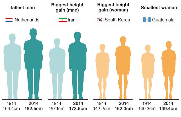 Dutch Men Revealed As World S Tallest Tall Guys Average Height For Women Women