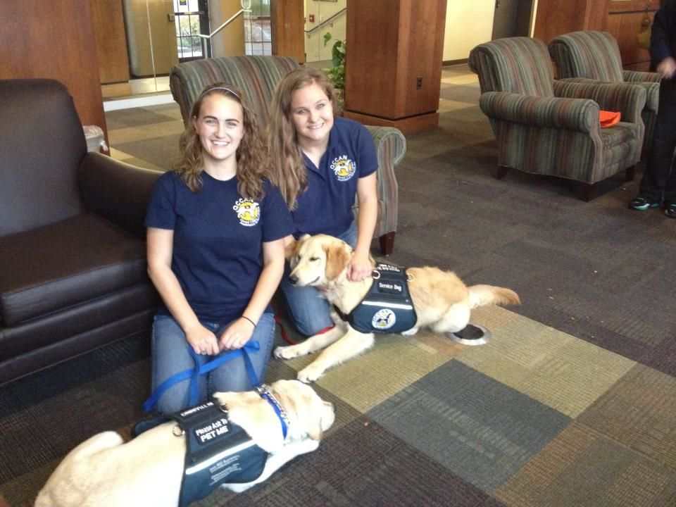 These Are Some Of The Augustana College Students That Are Training