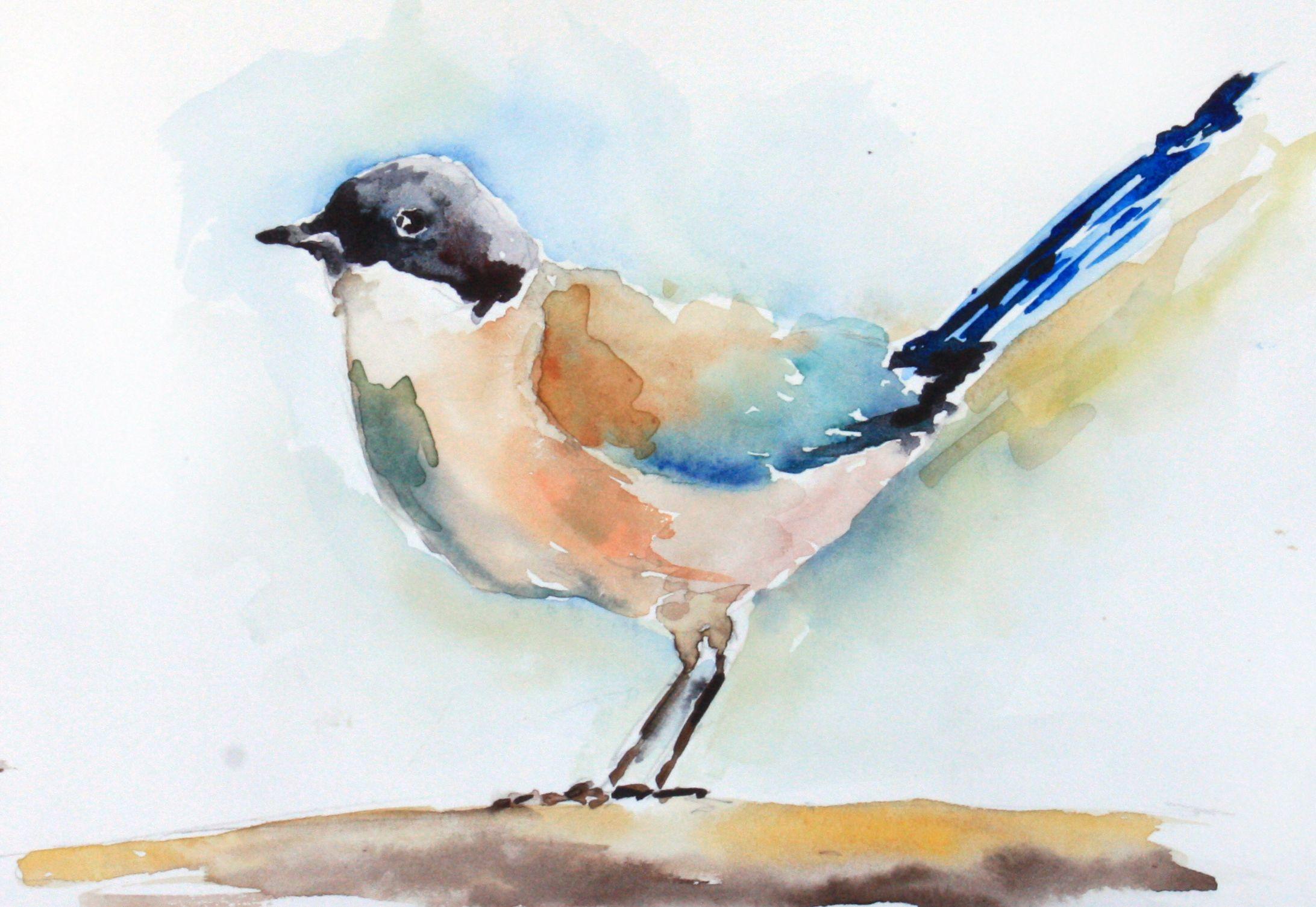 Птицы акварелью картинки