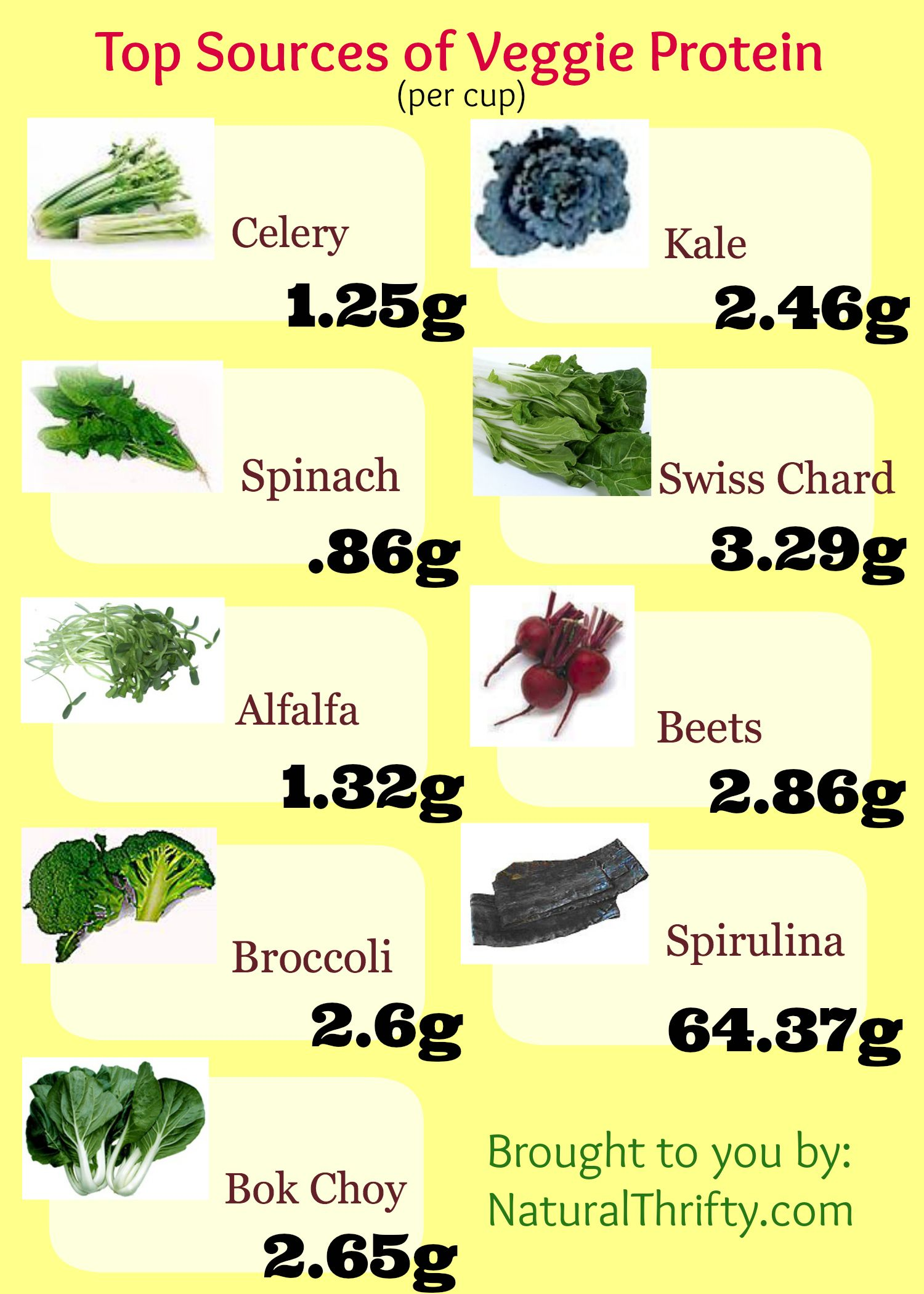vegetable juicing recipes: veggie protein sources chart