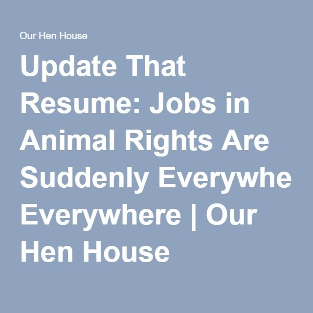 wwwourhenhouseorg 2012 11 update-that-resume-jobs-in - resume for jobs