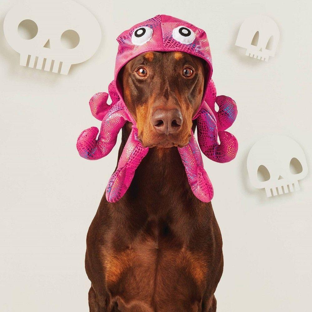 Halloween Octopus Hat Dog Costume M L Hyde Eek Boutique Women S Size Medium Large Multico Pet Halloween Costumes Dog Halloween Costumes Dog Costume