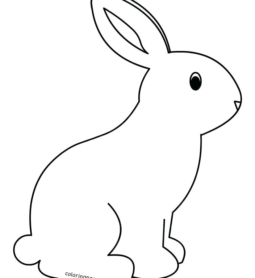 - Coloring Page Rabbit Cute Bunny Coloring Sheets Rabbit Coloring Page Free  Coloring Cute Bunny Rabbit C… Bunny Coloring Pages, Rabbit Colors,  Pikachu Coloring Page