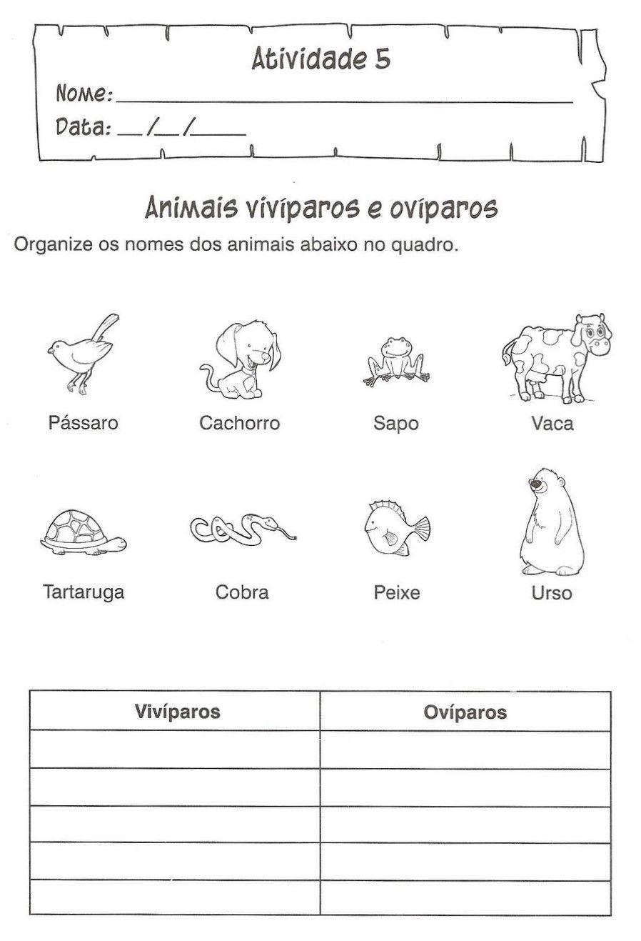 A linguagem no referencial curricular nacional para a educação infantil 2