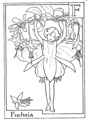 Merveilleux Letter F For Fuchsia Flower Fairy Coloring Page, Flower Fairies Coloring  Pages, Girls Coloring Pages, Flower Coloring Pages, Free Online Coloring  Pages And ...