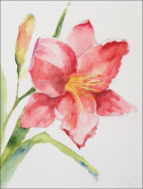 How to paint loose expressive lilies in watercolor for How to paint a rose in watercolor step by step
