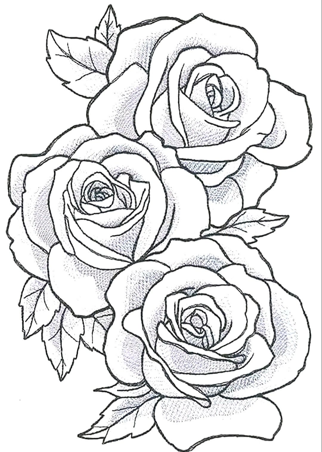 Pin By Jk On Drawings In 2020 Rose Outline Tattoo Rose Tattoo Stencil Flower Outline Tattoo