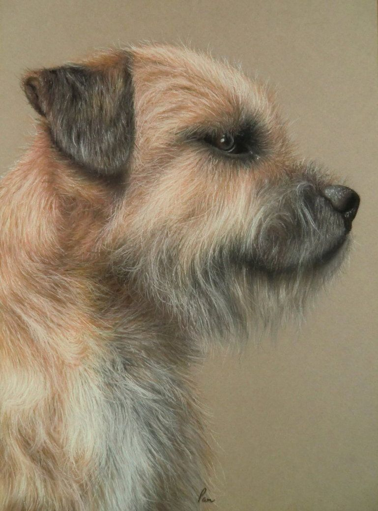 Derwent Pastel Pencils On Canson Mi Teintes Paper This Is My