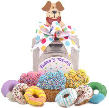 Birthday doggie donuts!