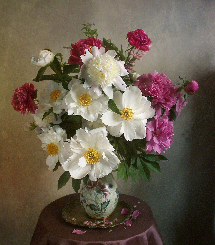 Как хороши, как свежи были розы. Фотограф Марина Филатова ...