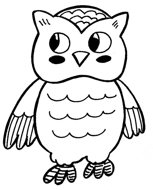 Pics Of Owls To Print And Color