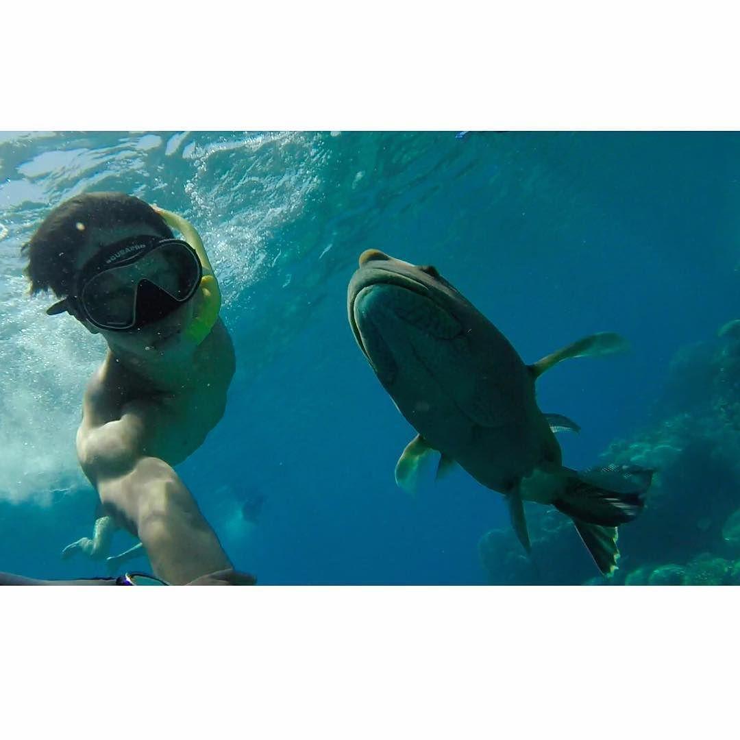But first let me take a selfie  #australia #cairns #GreatBarrierReef #gopro #selfie #scuba #diving #padi #instructor #snorkel #freediving #호주 #케언즈 #고프로 #셀피 #스쿠버 #다이빙 #스노클링 #프리다이빙 #패디강사 #박대웅 by daeung26 http://ift.tt/1UokkV2