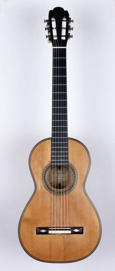 Builders Of The Early 19th Century Guitar Guitar Lessons Fingerpicking Classical Guitar