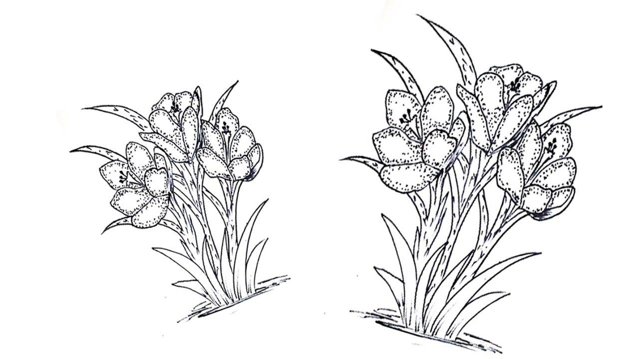 الدرس 5 تعلم الرسم باقة زهور Lesson 5 Learn Drawing Bouquet Flo Hand Art Art Moose Art