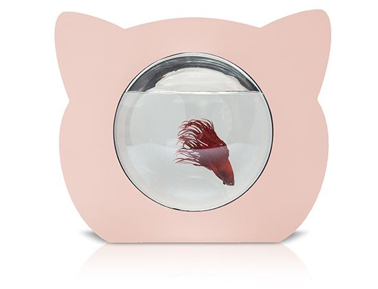 Cat Shaped Fish Bowl