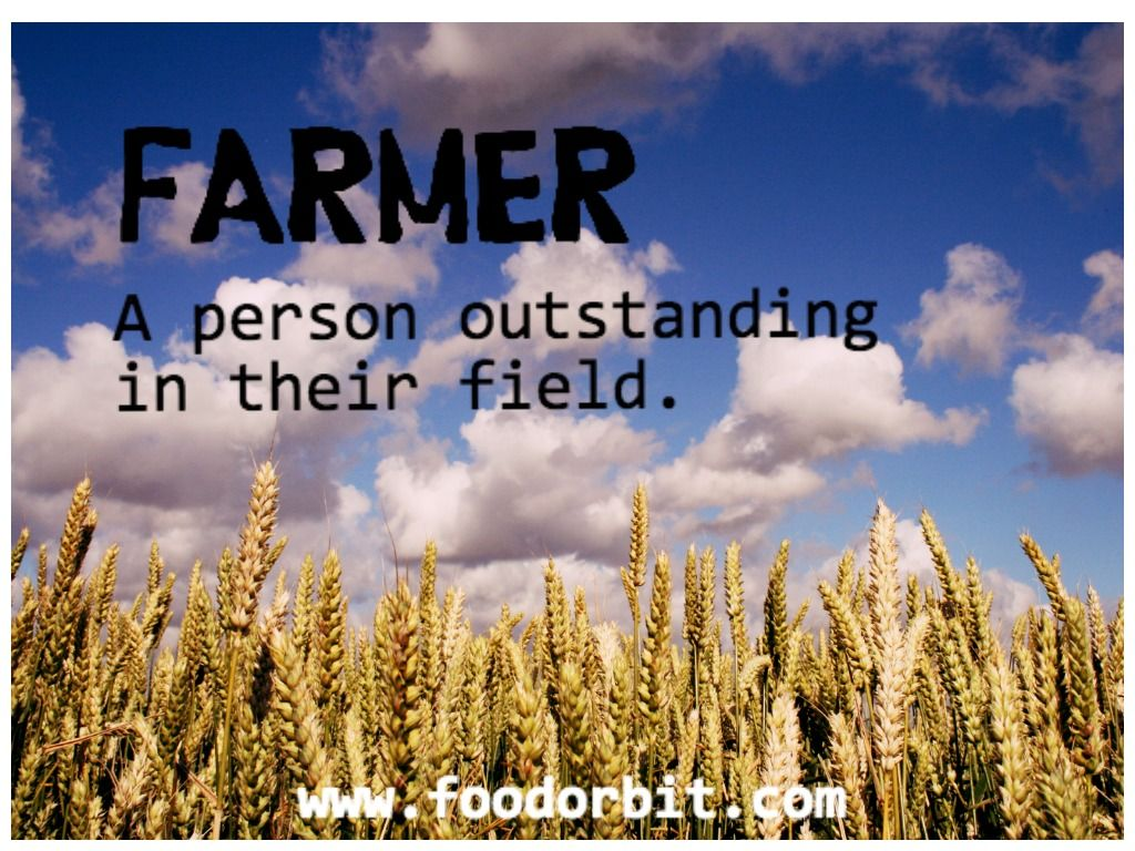 A Person Outstanding In Their Field Foodorbit