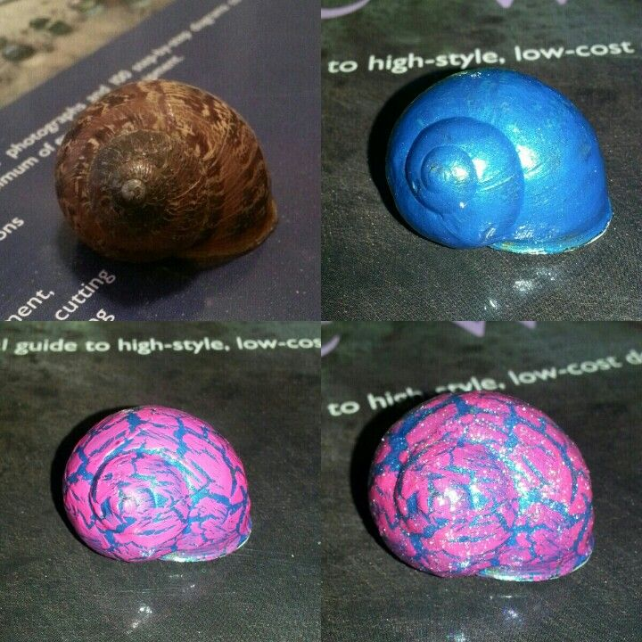 Paint Old Snail Shells With Nail Polish For A Cute Unique Keepsake