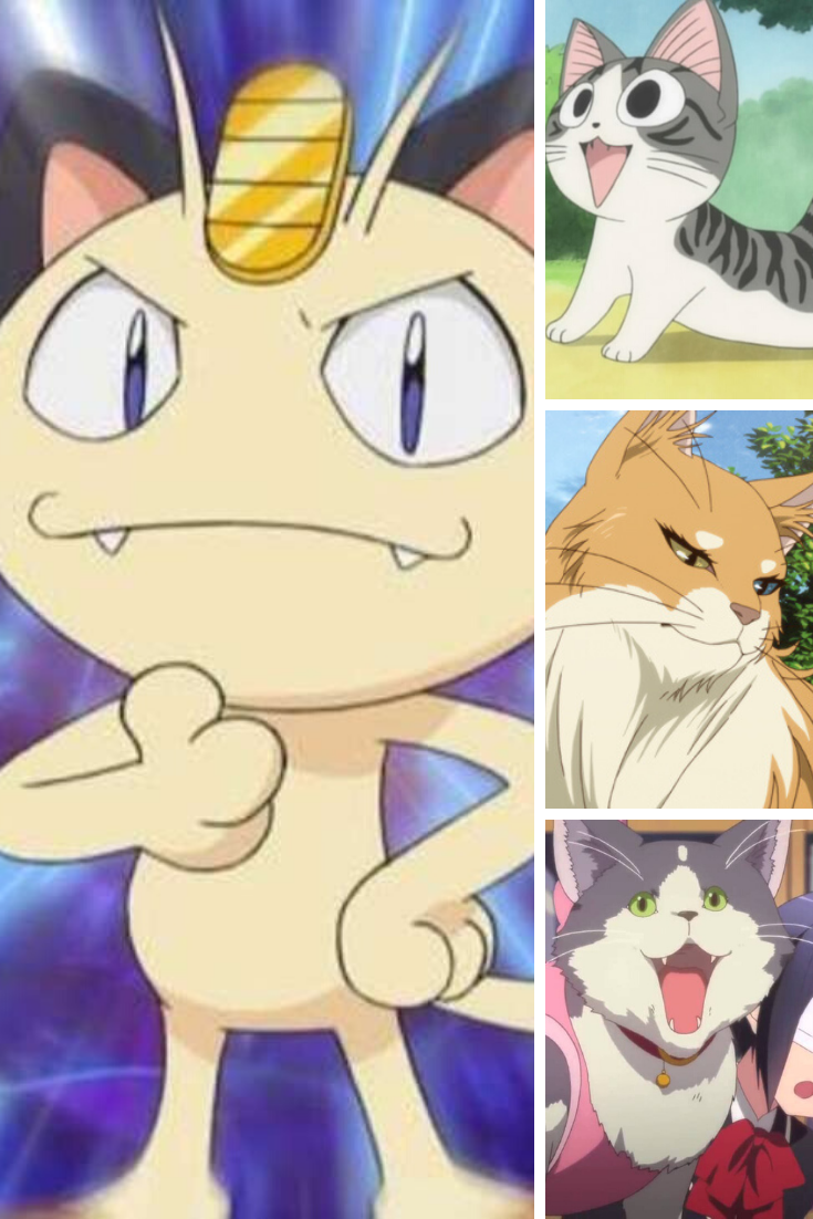 Best Anime Cats That The Anime World Has Ever Seen Anime Cat Cute Anime Cat Anime