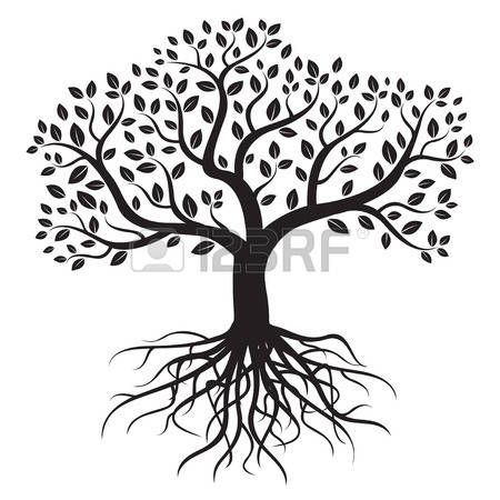 Weeping Willow Tree Black And White Tattoo Tree Of Life Stock Ill...