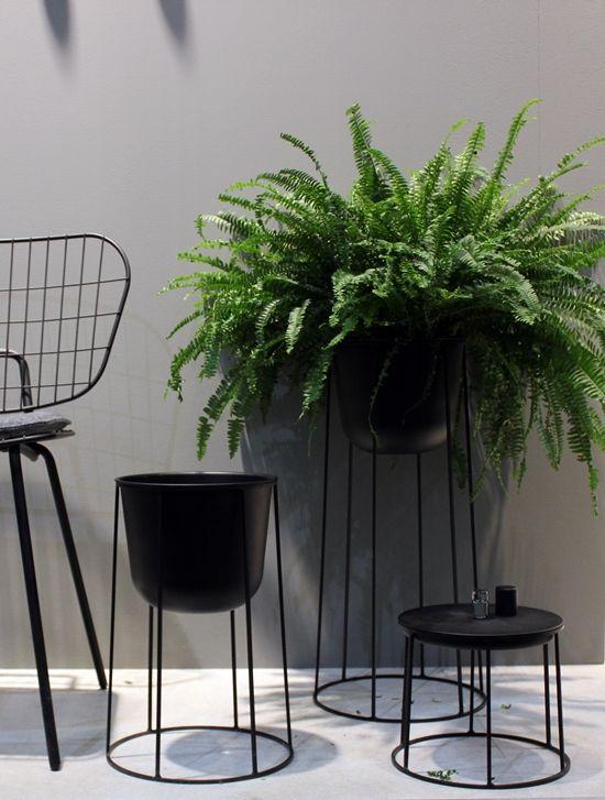 La maison d'Anna G.: #Maison&Objet 2015 #1 The Green Trend #green #plants