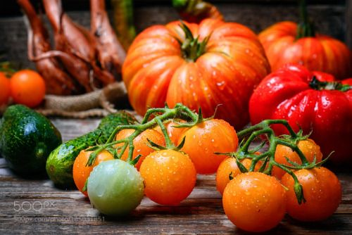 harvest summer tomatoes by nikolay_2002  IFTTT 500px