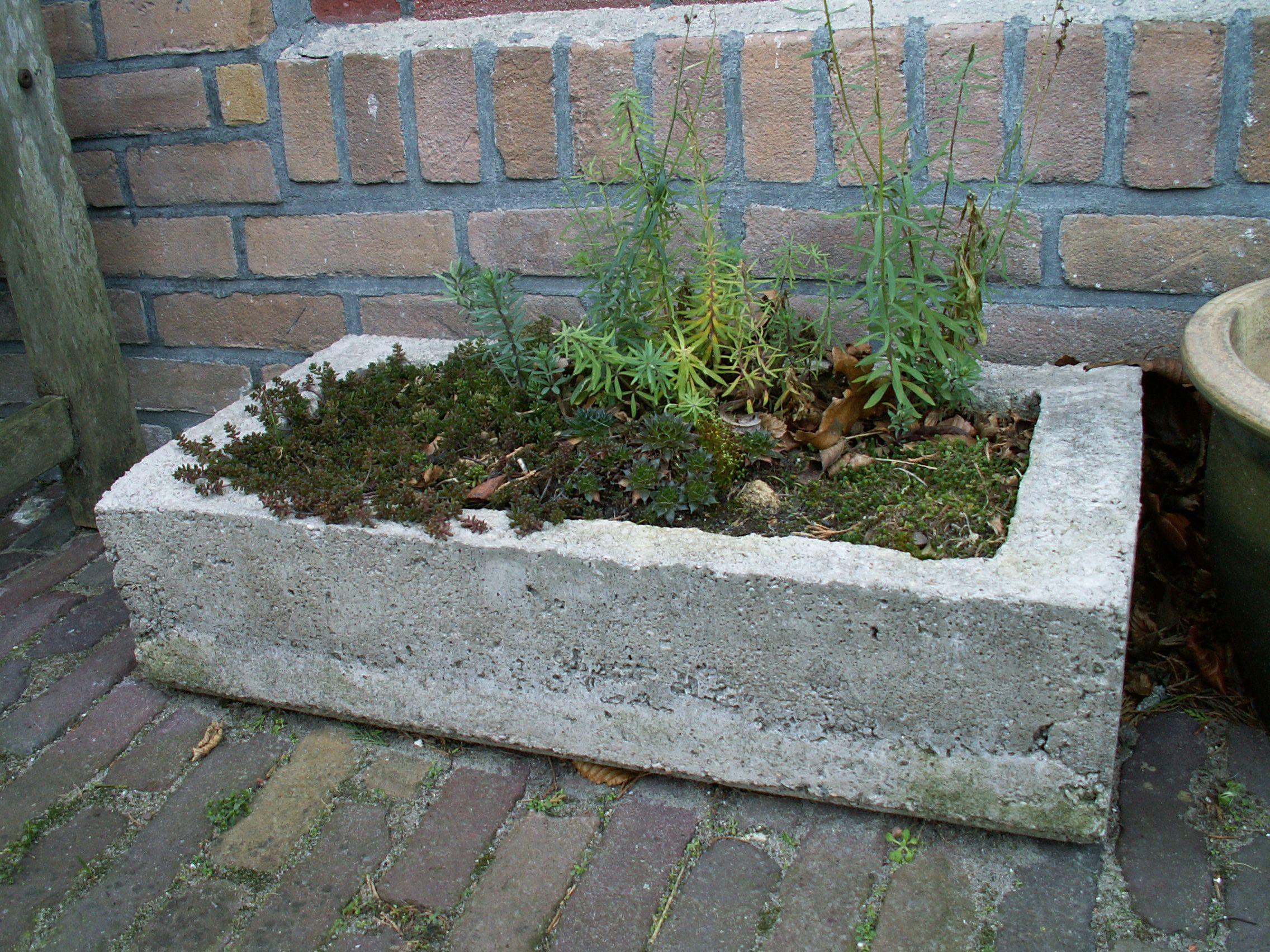 trog van beton