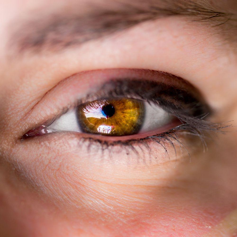стилистика янтарный глаз картинки полученных