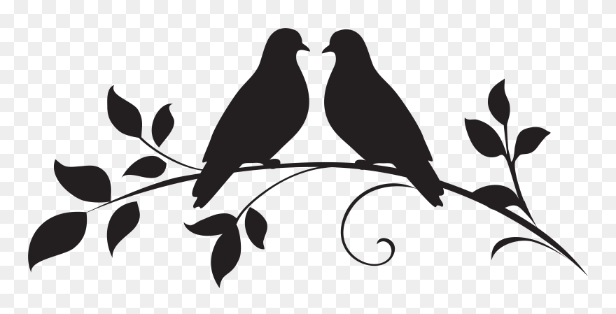 Download Hd Dove Png Clipart Silhouette Love Birds Clipart Black And White Transparent Png And Use The Free Clipart F Bird Clipart Love Birds Bird Silhouette