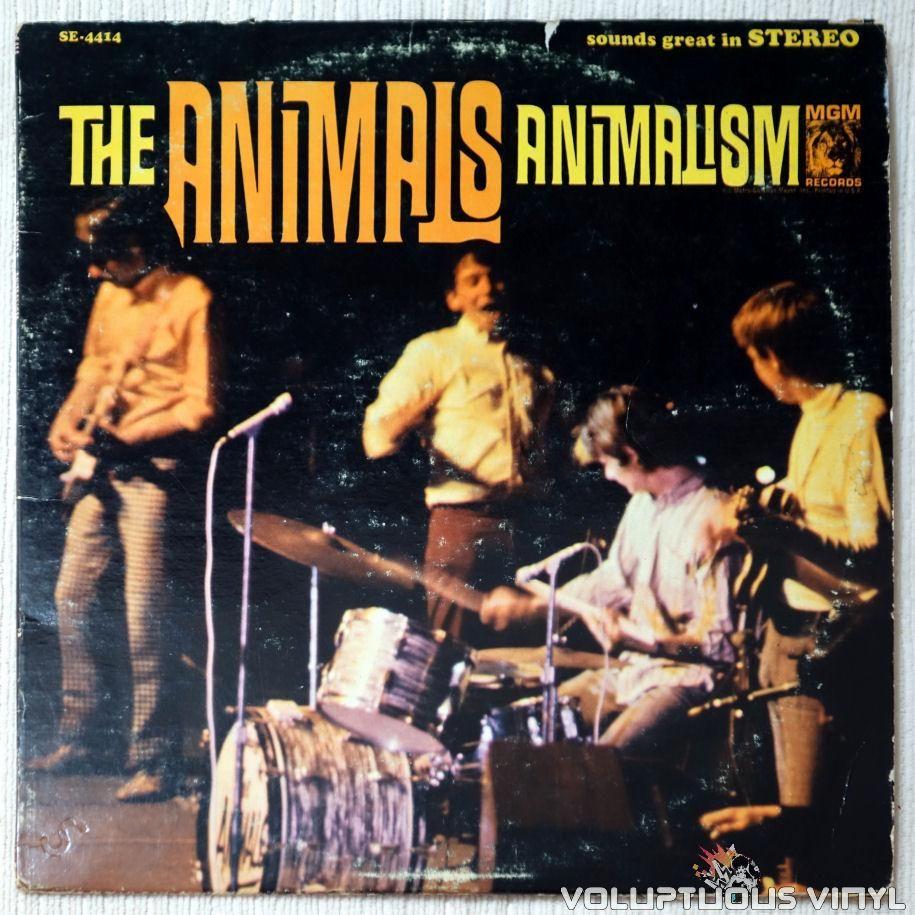 The Animals Animalism 1966 Stereo Rock Album Covers Vinyl Records Album Covers