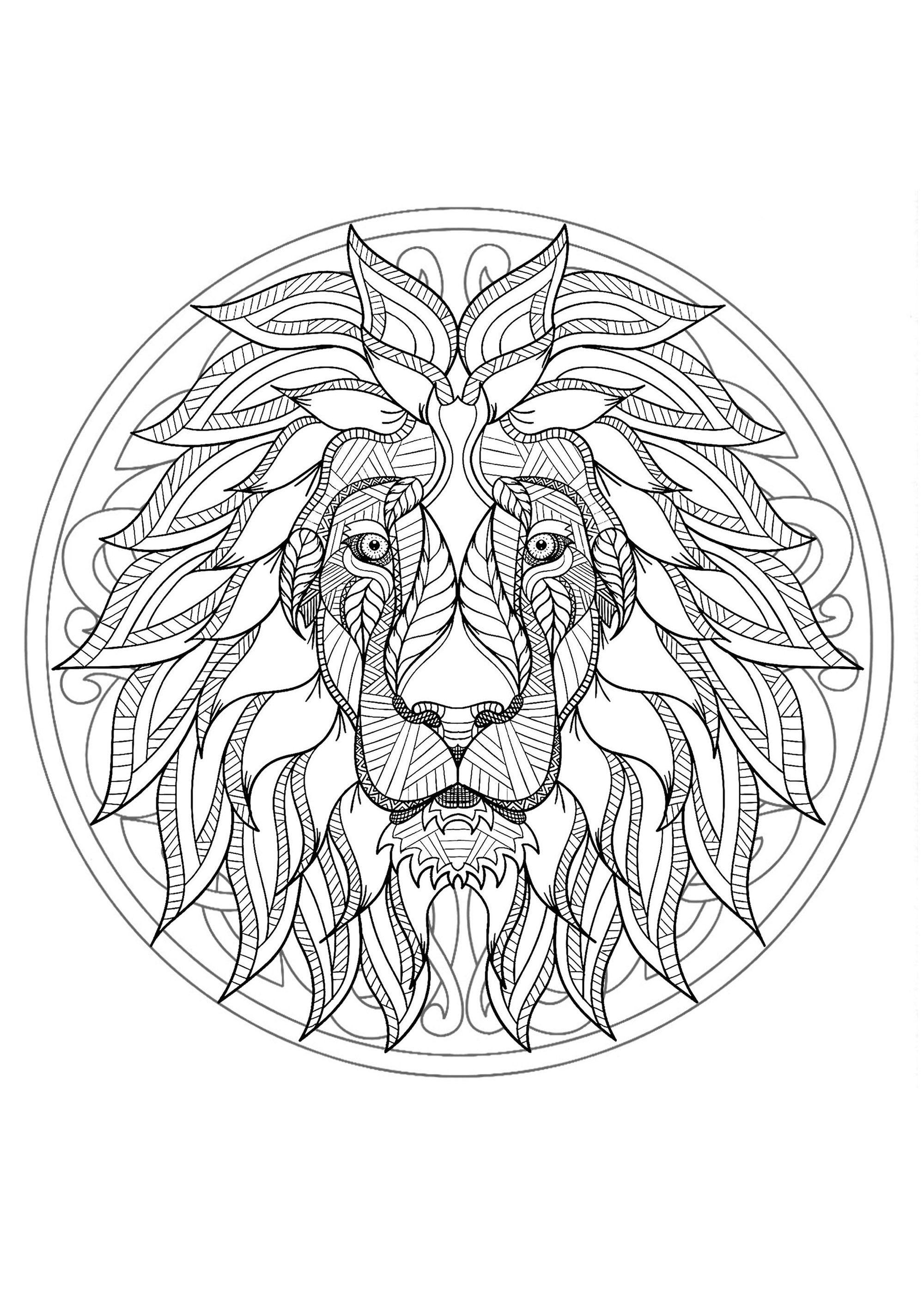 Mandala With Original Lion Head And Geometric Patterns Mandalas