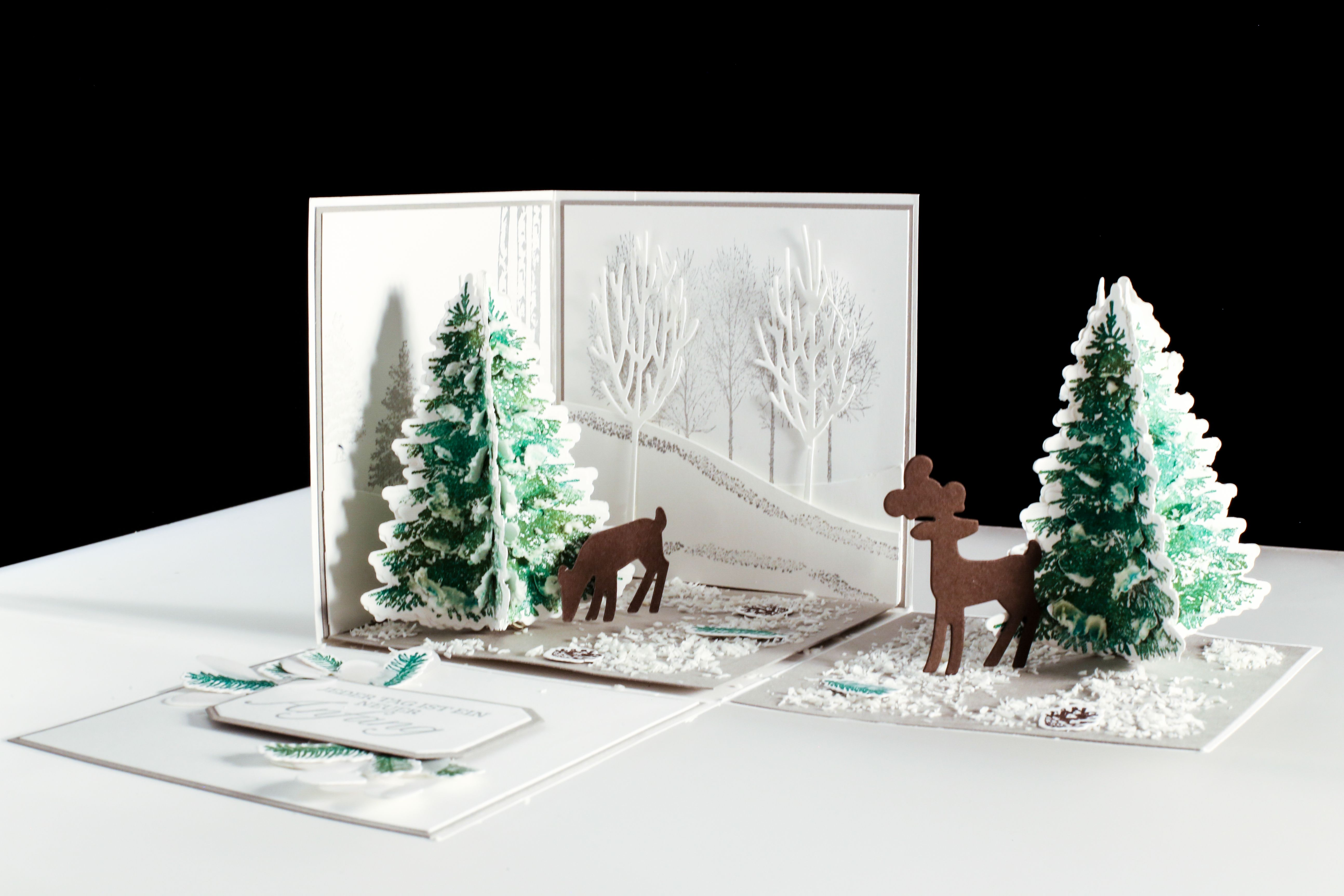Stampinup Winter Wonderland Box, Explosionsbox Winterwald und ...