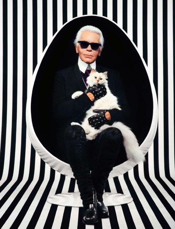 Dünyaca ünlü moda tasarımcısı Karl Lagerfeld'in Birman cinsi kedisi Choupette'in ihtişamlı hayatı göz kamaştırıyor. Top modellerle arkadaşlık eden, özel jetlerden inmeyen 5 yaşındaki Choupette, son olarak Gisele Bündchen'le birlikte Vogue dergisinin Brezilya edisyonunun kapağını süslemişti. Detaylar ajanimo.com'da.. #ajanimo #ajanbrian #hayvan #animal #cat #kedi #moda #trend #fashion #kedi #cat #white #black