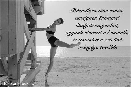 idézetek tánc idézetek a táncrol   Google keresés | Dance quotes, Dance, Passion