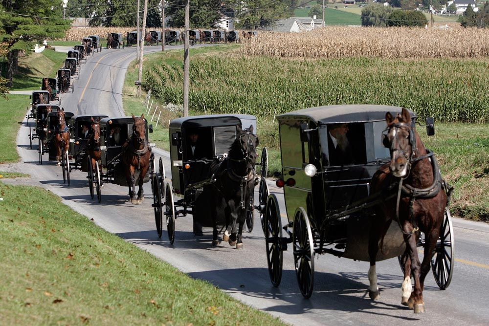 i 39 ve been stuck behind one of these long line of buggies lancaster co pa this is an amish. Black Bedroom Furniture Sets. Home Design Ideas