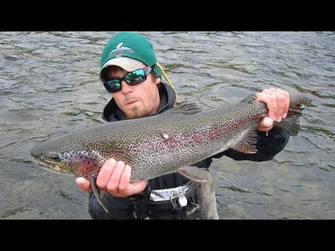 Alaska Fly Fishing Rainbow Trout 1080p Hd Top Rated Video More Info On Https 1 W W Com Fishing Alaska Fly Fi Fly Fishing Alaska Fishing Rainbow Trout