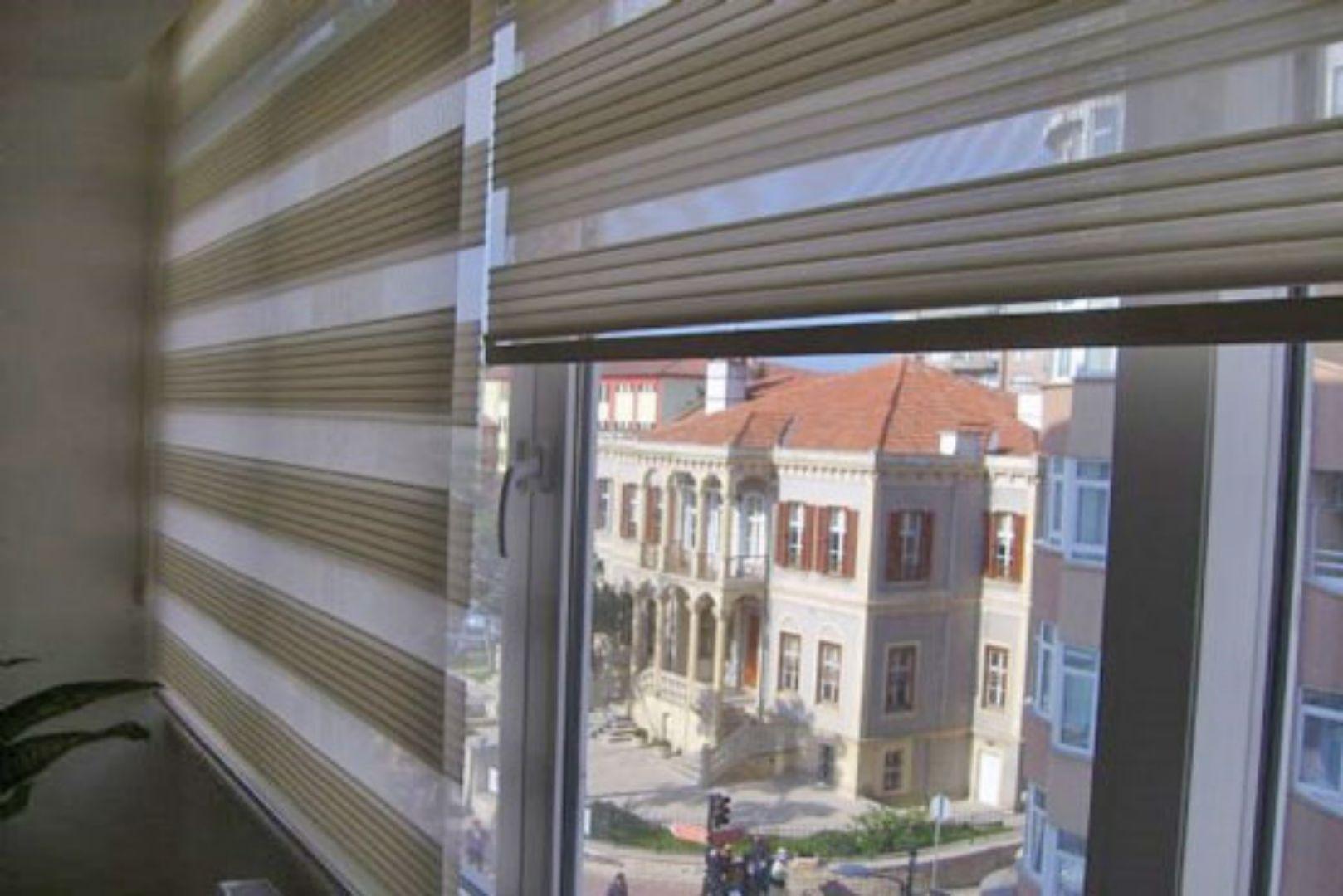 Zebra window coverings  grey zebra curtain models  curtain models  pinterest  zebra