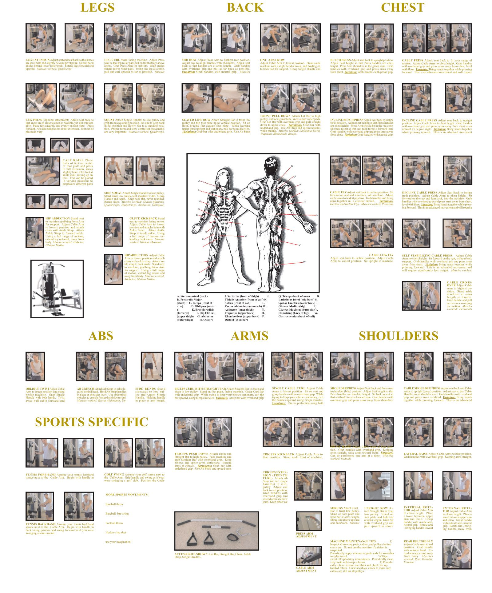 Printable Exercise Routine at Home | Home Fitness: Designing