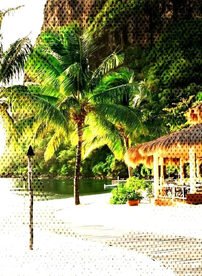 Sugar Beach Hotel in St LuciaYou can find Beach hotels and more on our website.Sugar Beach Hotel in