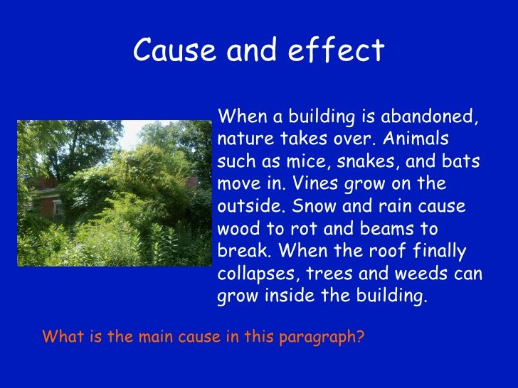 Cause and effect When a building is abandoned, nature takes over. Animals such as mice, snakes, and bats move in. Vines gr...