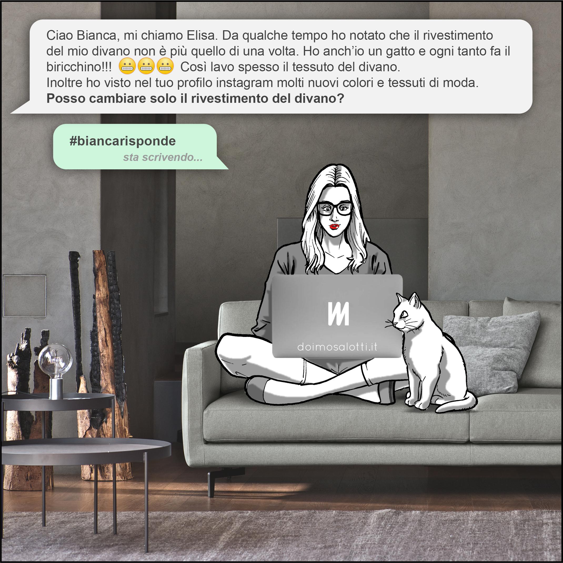 Gatti E Divani In Pelle.Biancarisponde Anche Il Mio Gatto Neko A Volte Fa Il