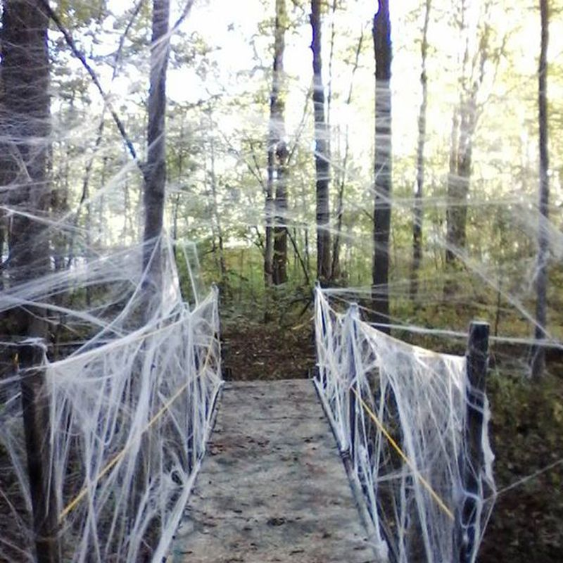 Buy 3 bags get 1 free Halloween Strechable Spider Web 40g with - spider web halloween decoration