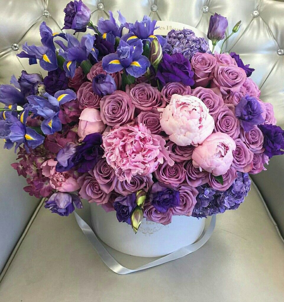 Pin by Liza Dinata on FLOWER BOX 1   Pinterest   Flower boxes and ...