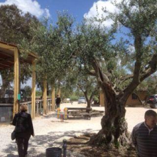 Voyage FNSEA en Italie : Ferme Casale del Casteliacio