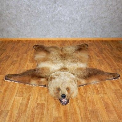 Grizzly Bear Full Size Rug Taxidermy Mount For