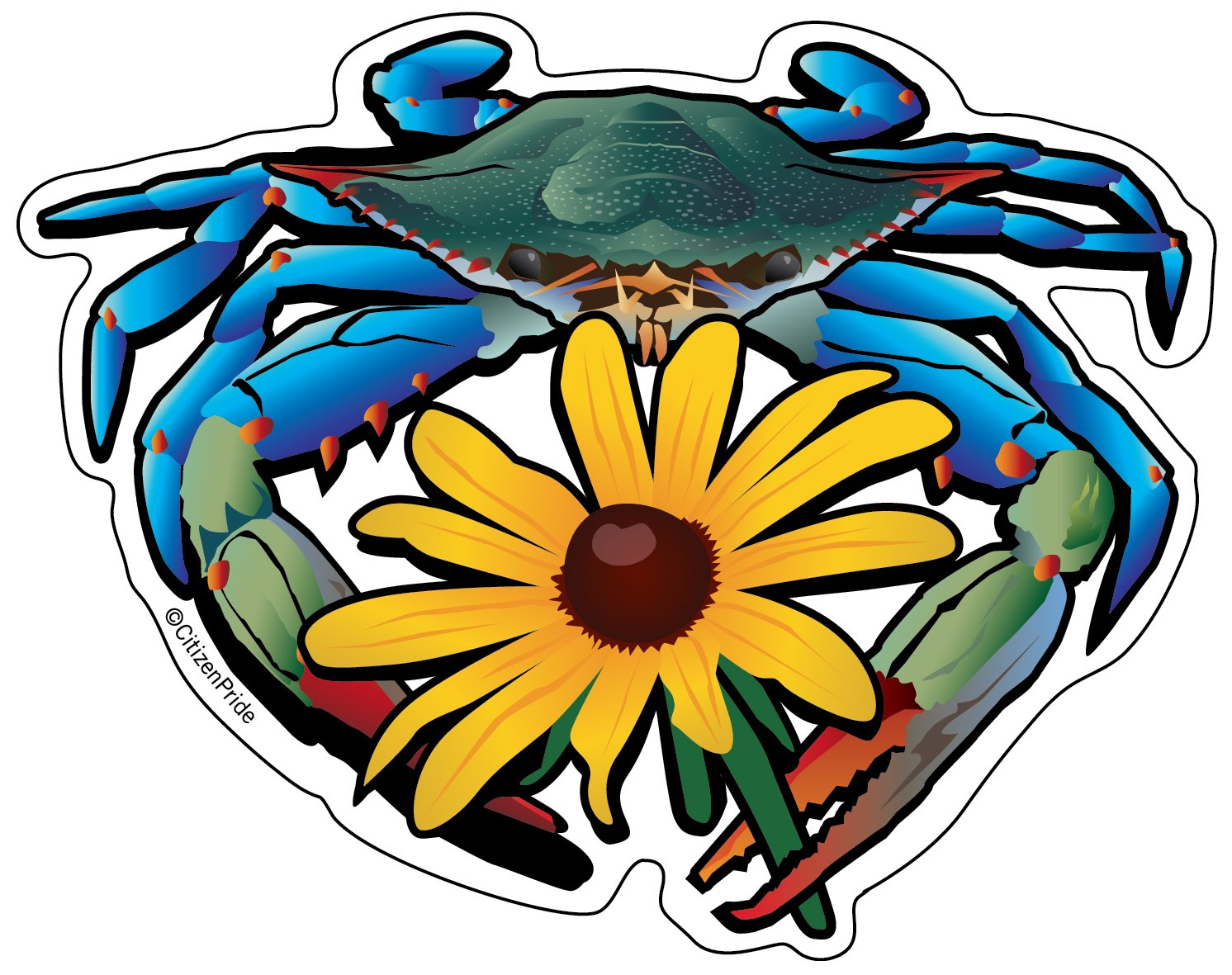 Blue Crab Maryland Black Eyed Susan Sticker 5x4 Black Eyed