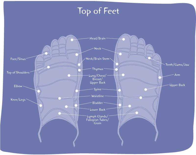 Top of Foot Pain Diagram FP17 | Anatomical Associations