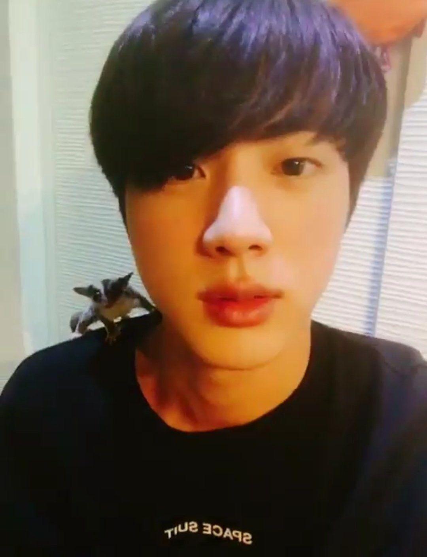 ☆彡 171126 Seokjin's Tweet 어묵이 | Eomukie