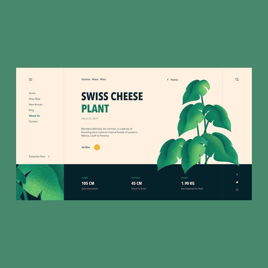 Monstera Deliciosa Dribbble Com Ninno Web Design Web Design Inspiration Portfolio Web Design